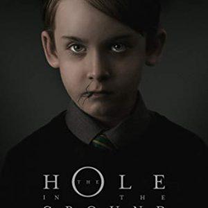 دانلود فیلم ترسناک حفره ای در زمین The Hole In The Ground 2019