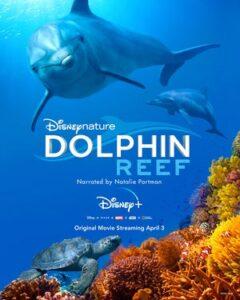 دانلود مستند Dolphin Reef 2018 صخره دلفین